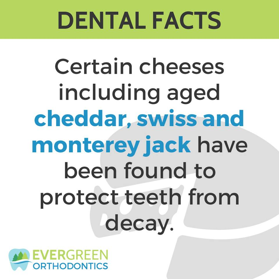We bet you didn't know this fact about ‪#‎cheese‬. Mmmmm cheese, it's not just tasty, it's useful!