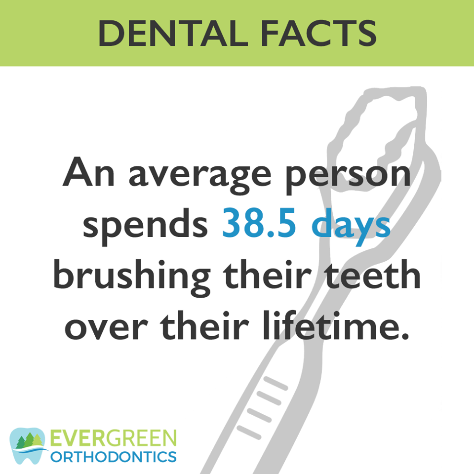 That's a whole lot of time spent brushing, but don't forget to floss as well!