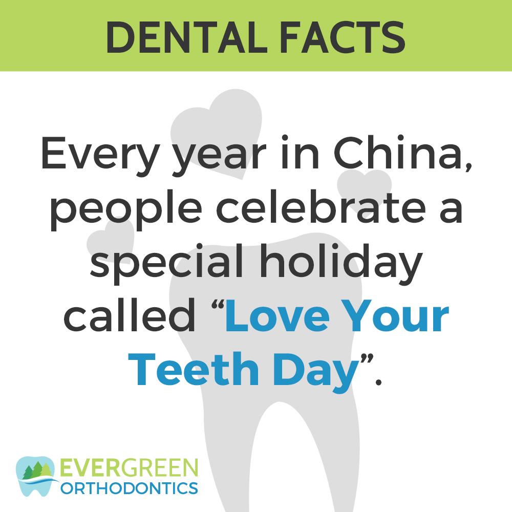 fun dental facts love your teeth day