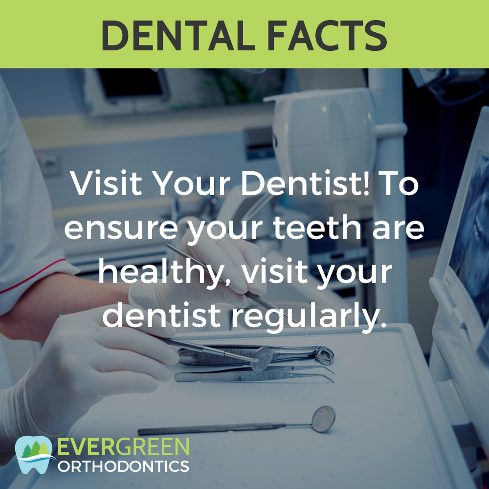 how-often-to-visit-dentist